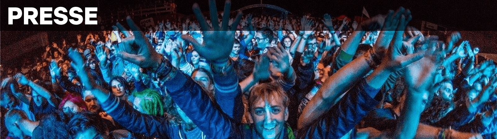 Rock im Dorf Festival Crowd